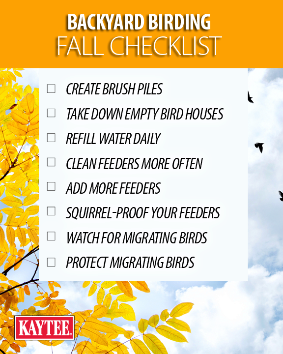 Backyard Birding Fall Checklist