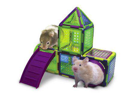Hamster Puzzle Playground