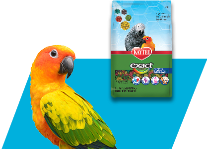Find The Exact Formula For Your Feathered Friend