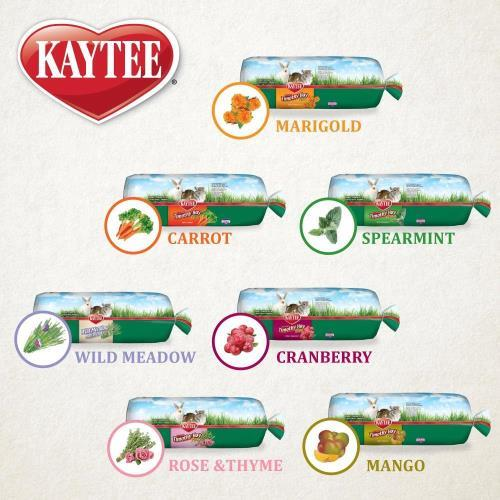 Kaytee Hay Options For Your Small Animal