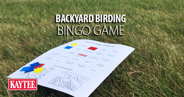 Backyard Birding Bingo Game