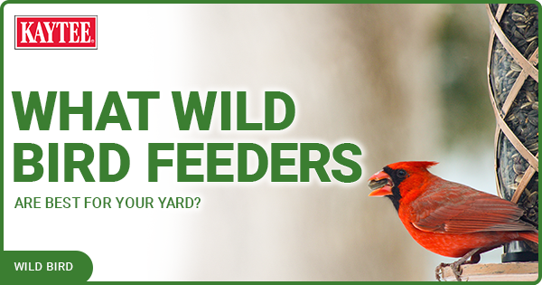 Kaytee What Wild Bird Feeders Are Best For Your Yard blog