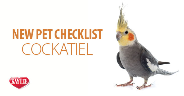 New Pet Cockatiel Checklist