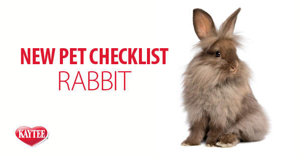 New Pet Rabbit Checklist